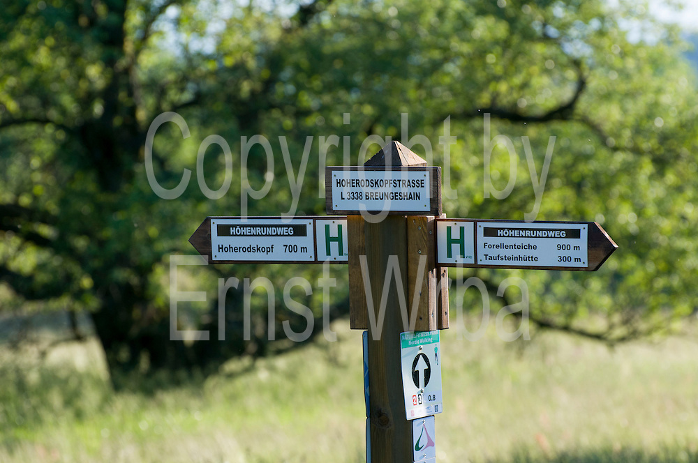 Wanderwegsweiser, Hoherodskopf, Vogelsberg, Hessen, Deutschland | walking sign post, Vogelsberg, Hesse, Germany