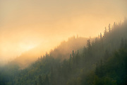 Morning fog along the Peace River<br /> Dunvegan<br /> Alberta<br /> Canada