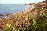 Bears beach, Island of Herm, Channel Islands, Great Britain