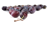 Plums on white background - studio shot