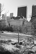New York. Central park in winter in the snow ,  Manhattan  New York  Usa /  Central park, en hiver dans la neige.