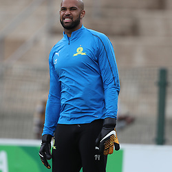 DURBAN, SOUTH AFRICA - SEPTEMBER 16: Reyaad Pieterse Goalkeeper of Mamelodi Sundowns during the Absa Premiership match between AmaZulu FC and Mamelodi Sundowns at King Zwelithini Stadium on September 16, 2018 in Durban, South Africa. (Photo by Steve Haag/Gallo Images)
