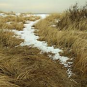 Snowy Path to the Beach, Biddeford Pool, Maine, winter, 2008.