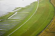 Luftaufnahme von Feldern in Eiderstedt, Nordfriesland (Schleswig-Holstein)