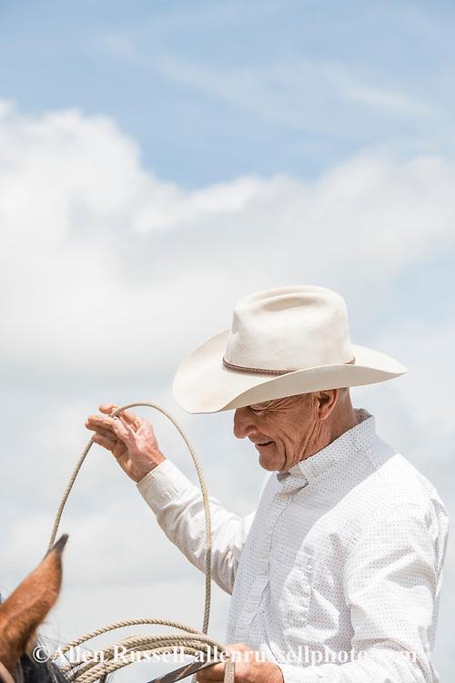 Rancher, Joe Peila, cattle branding, Lazy TL Ranch, north of Miles City, Montana