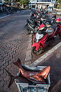 Fish Market<br /> Puerto Ayora, Santa Cruz Island<br /> GALAPAGOS ISLANDS<br /> ECUADOR.  South America
