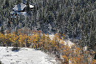 Golden cottonwood trees line the bottom of a canyon in the Bighorn Mountains seen after an early season snowfall.