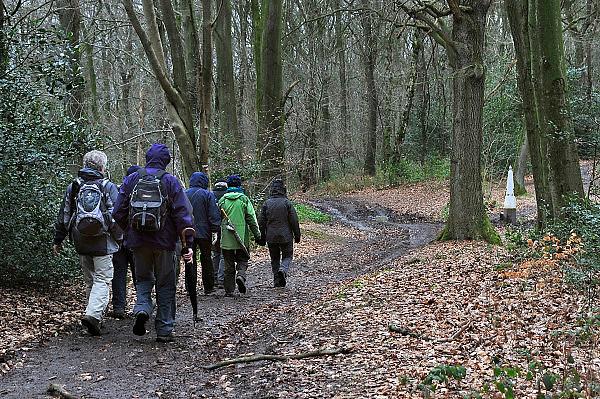 Nederland, Vaals, 8-2-2014In het bos op de Vaalserberg staan oude grenspalen die de grens tussen Belgie en Nederland markeren.Deze werd ingesteld in 1843 nadat belgie onafhankelijk was geworden. Het bos is een geliefd wandelgebied. Een groepje oudere wandelaars passeert.Foto: Flip Franssen/Hollandse Hoogte