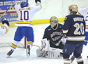 Notre Dame right winger Kevin Nugent (20) and goaltender Mike Johnson (center) look on as LSSU's Nick McParland (10) celebrates the Lakers third period goal during Saturday nights game in Sault Ste. Marie.