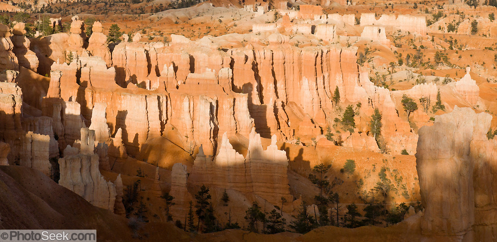 Sunset light strikes orange and white hoodoos in Bryce National Park, Utah, USA. Bryce is actually not a canyon but a giant natural amphitheater created by erosion along the eastern side of the Paunsaugunt Plateau. The ancient river and lake bed sedimentary rocks erode into hoodoos by the force of wind, water, and ice. (Panorama stitched from 2 photos.)