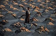 Afghanistan. Kandahar. TALIBANS in Afghanistan. Kishad Djali new cemetery were are buried the talibans killed in Mazar by Malik  militia  Kandahar     searching for their names   /  Kishad Djalil Le Cimetière des martyrs talibans . àKandahar  capitale des talibans, Afghanistan.  Martyrs talibans tues  à Mazar I shariff,  Kandahar/   Afghanistan ,   les familles essaient de reconnaitre les corps avec les restes de vetements; ces corps etaient dans une fosse commune depuis un an, Kandahar Afghanistan