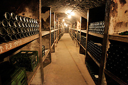 CZECH REPUBLIC MORAVIA JECMENISTE 10SEP05 - View into the deep cellars of the Wineyard Vrbovec, founded in 1770 by the Loucky monastery near Znojmo. Southern Moravia's centuries-old traditions in wine growing make it a well-established wine region...jre/Photo by Jiri Rezac..© Jiri Rezac 2005..Contact: +44 (0) 7050 110 417.Mobile:  +44 (0) 7801 337 683.Office:  +44 (0) 20 8968 9635..Email:   jiri@jirirezac.com.Web:     www.jirirezac.com..© All images Jiri Rezac 2005 - All rights reserved.