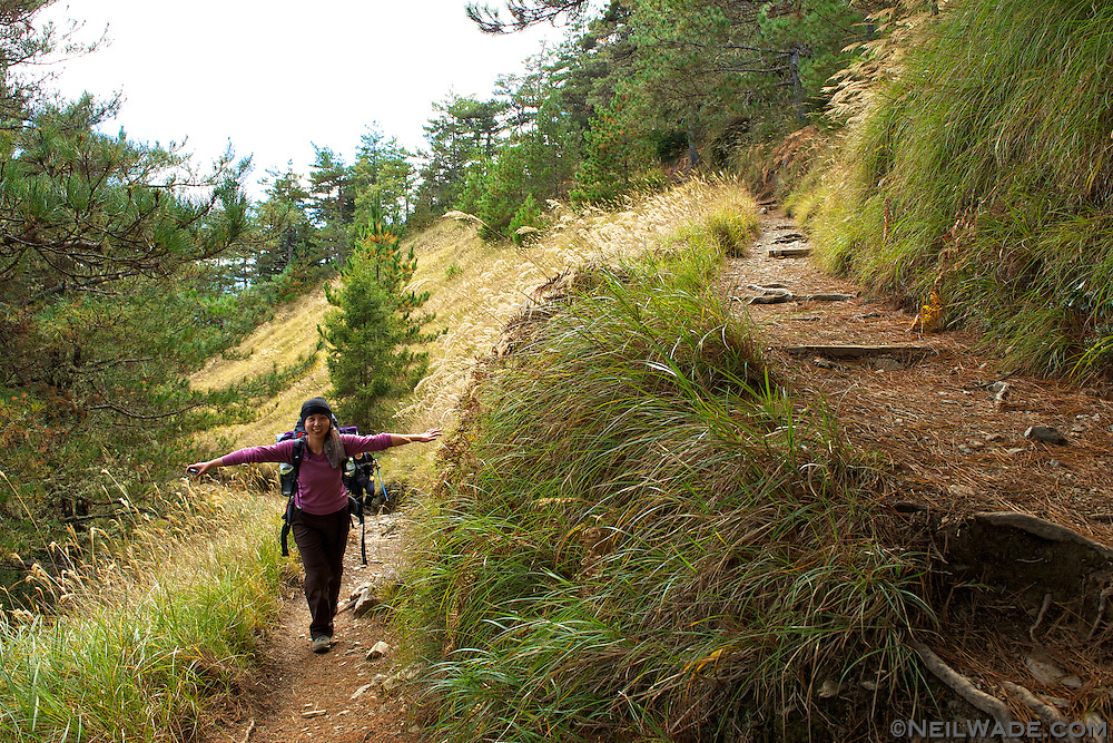 The Snow Mountain hike goes through a variety of different ecosystems:  several different kinds of forests, grasslands, and even a high mountain cirque.