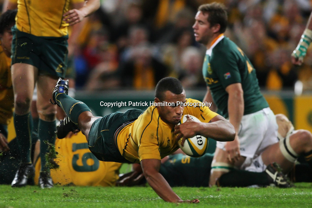 Will Genia dives to score during the Tri-Nations rugby Test at Suncorp Stadium in Brisbane,  July 24, 2010.The Wallabies again ran the world champion Springboks into submission to win the second Tri-nations rugby Test 30-13 .