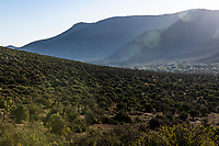Rugged mountainous landscape of the Karoo, Mount Camdeboo, Eastern Cape, South Africa