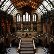 Natural History Museum, South Kensington