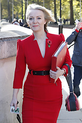 © Licensed to London News Pictures. 29/10/2018. London, UK. Liz Truss, Chief Secretary to the Treasury arrives at the back of Downing Street. Later today the Chancellor will deliver his Autumn Budget to Parliament. Photo credit: Peter Macdiarmid/LNP