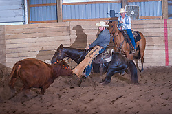 September 24, 2017 - Minshall Farm Cutting 6, held at Minshall Farms, Hillsburgh Ontario. The event was put on by the Ontario Cutting Horse Association. Riding in the $2,000 Limited Rider Class is James Cook on Dual Peps Tom Cat owned by James Cook.