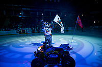 KELOWNA, CANADA - JANUARY 19:  Rocky Raccoon, the mascot of the Kelowna Rockets stands at centre ice at the start of the game against the Prince Albert Raiders on January 19, 2019 at Prospera Place in Kelowna, British Columbia, Canada.  (Photo by Marissa Baecker/Shoot the Breeze)