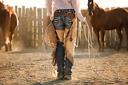 Cowgirl Catching a Horse in Corral, Idaho