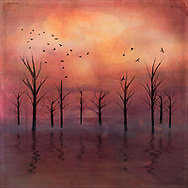 Painterly rendition of bare trees against a sunset sky reflecting in the slightly misty water below