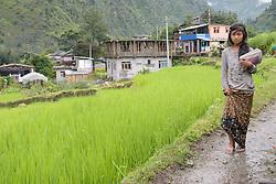 THEMENBILD - Trekkingtour in Nepal um die Annapurna Gebirgskette im Himalaya Gebirge. Das Bild wurde im Zuge einer 210 Kilometer langen Wanderung im Annapurna Gebiet zwischen 01. September 2012 und 15. September 2012 aufgenommen. im Bild nepalesisches Mädchen vor einem Dorf während des Monsoons // THEME IMAGE FEATURE - Trekking in Nepal around Annapurna massif at himalaya mountain range. The image was taken between september 1. 2012 and september 15. 2012. Picture shows nepali girl in front of a village, NEP, EXPA Pictures © 2012, PhotoCredit: EXPA/ M. Gruber