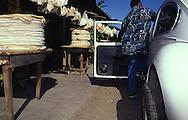 Puesto de ventas de casabe en la carretera de Cupira. 1996. (Ramón Lepage / Orinoquiaphoto)  Sale of casabe in Cupira's highway. 1996. (Ramon Lepage / Orinoquiaphoto)