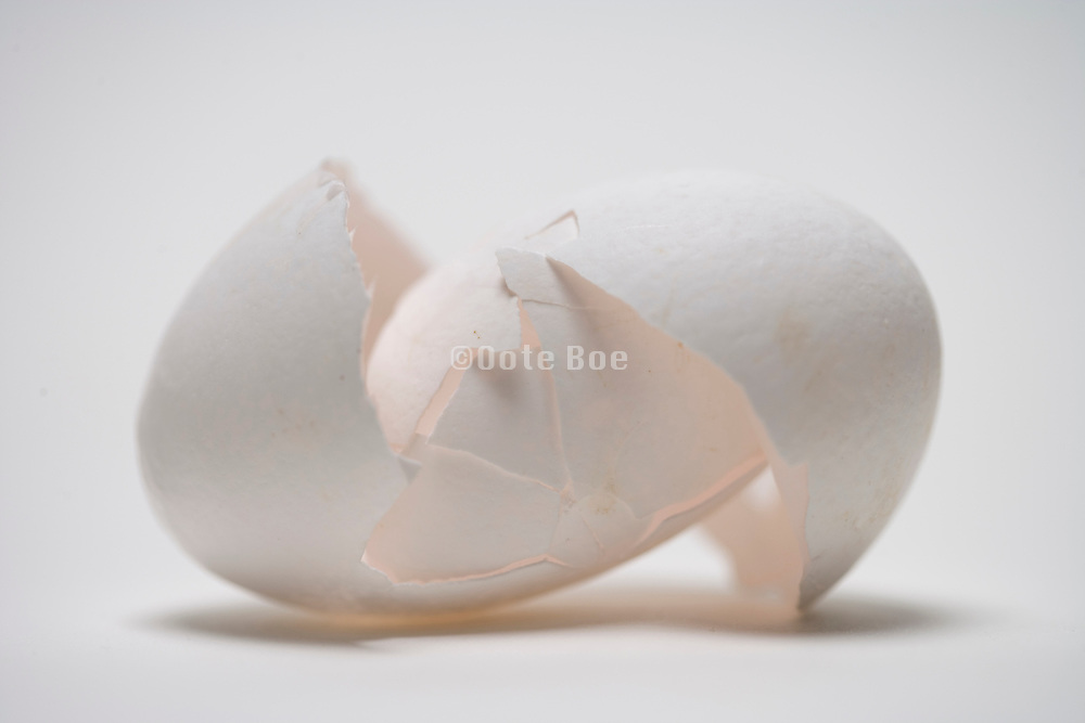 the eggshell of a broken with egg