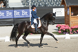 Heijkoop Danielle, (NED), Siro NOP<br /> Kingsley Donadeo Grand Prix<br /> Dutch Championship Dressage - Ermelo 2015<br /> © Hippo Foto - Dirk Caremans<br /> 17/07/15