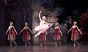 The Nutcracker <br /> choreography by Sir Peter Wright <br /> at the <br /> Birmingham Royal Ballet <br /> Birmingham Hippodrome, Great Britain <br /> 24th November 2017 <br /> <br /> snow fairy<br /> Alys Shee <br /> <br /> Photograph by Elliott Franks <br /> Image licensed to Elliott Franks Photography Services
