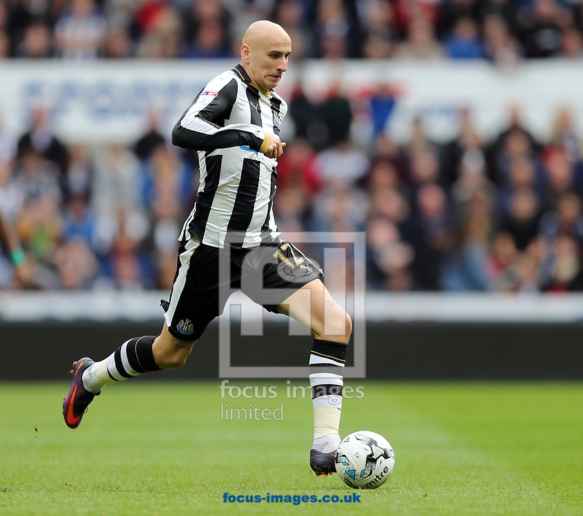 Jonjo Shelvey of Newcastle United during the Sky Bet Championship match at St. James's Park, Newcastle<br /> Picture by Simon Moore/Focus Images Ltd 07807 671782<br /> 01/04/2017