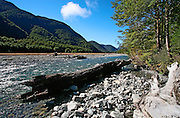 driftwood and river rocks feature prominently beside this nz river in lewis pass, southern alps, new zealand