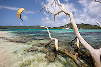Kiteboarder explores an uninhabited island from the vessel Discovery, on the Best Odyssey expedition near Grenada in the Caribbean.  A ghost white tree hangs out over the reef providing great contrast to the clear water and white sand.