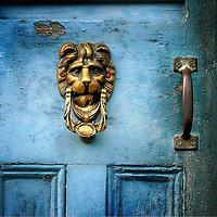 A brass door knocker on a blue door in the shape of a lions head