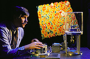 "Ralph Hollis of IBM at Yorktown Heights, N.Y. demonstrates a tele-nanorobotic manipulation system with atomic scale force feedback. A scanning tunneling microscope that is probing the surface of gold is linked to a force-feedback ""magic wrist"" which moves as the microscope probe maps out the atomic structure, enabling the user to ""feel"" the atoms. In the background is a color image of the gold's atomic surface structure. The other two researchers who worked on the system are (Tim).S. Salcudean, and David W. Abraham. Model Released"