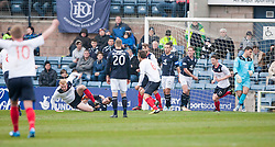 Falkirk's Mark Beck cele scoring their goal.<br /> half time : Dundee 0 v 1 Falkirk, Scottish Championship game played today at Dundee's Dens Park.<br /> &copy; Michael Schofield.