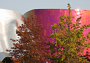"""The Experience Music Project (EMP, opened in the year 2000) is a museum of music history founded by Paul Allen (the co-founder of Microsoft Corporation), located on the Seattle Center campus, in Seattle, Washington, USA. Located near the Space Needle, it is one of the two stops on the Seattle Center Monorail, which runs through the building. Paul Allen's Science Fiction Museum and Hall of Fame is located within the EMP building. The structure of EMP was designed by Frank Gehry, and resembles many of his firm's other works in its sheet-metal construction, such as Guggenheim Museum Bilbao, Walt Disney Concert Hall and Gehry Tower. The central """"Sky Church"""" room pays homage to Jimi Hendrix and other rock 'n' roll icons. EMP has provided funding for radio station KEXP in partnership with the University of Washington."""