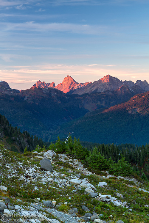Tomyhoi and the Border Peaks from Artist Point in the North Cascade Mountains in Washington State, USA