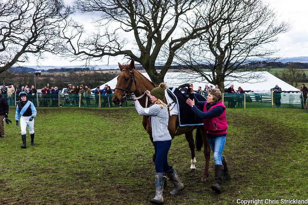 Corbridge, Northumberland, England, UK. 28th February 2016. Jockey Joanna Walton makes her way across the paddock to join her ride Durban Gold at the Tynedale Hunt annual Point to Point horse racing fixture.