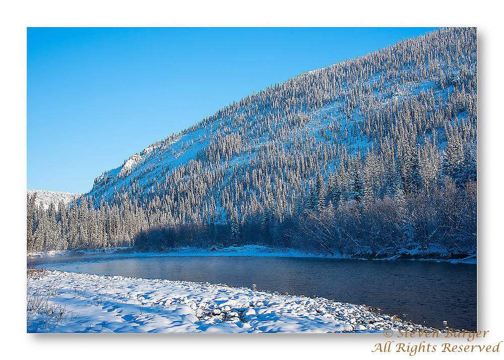 Sunlight reflecting on frost on tree branches early in the morning on the Fishing Branch River near Bear Cave Mountain in the Yukon Territory, Canada.