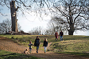 © Licensed to London News Pictures. 22/03/2015. Richmond, UK People enjoy the late afternoon sunshine in Richmond Park, Surrey, today 22nd March 2015. Photo credit : Stephen Simpson/LNP