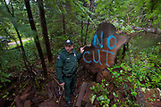 DNR officer Jared Eison investigates a naturally fallen tree and makes a note of its location for future follow-up. He suspects that poachers will discover the tree shortly.  Olympic Peninsula, WA State