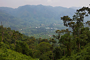 Looking out across the valley of the Bwindi community and Buhoma village on the edge of the Bwindi Impenetrable Forest in Western Uganda. The Bwindi Community Hospital is based in Buhoma and serves approximately 250,000 people from the surrounding area.