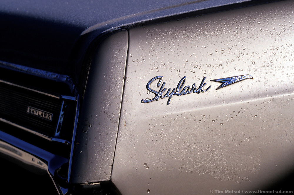 A Buick Skylark with early morning dew.