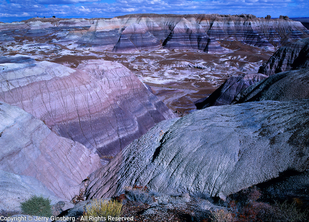 Striations of blue run through the eroded forms of Blue Mesa in Petrified Forest National Park, Arizona.