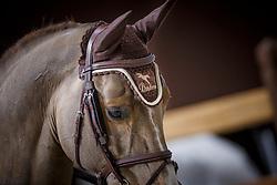 Veniss Pedro, (BRA), Rissoa d Ag Bois Margot<br /> Coupe de Genève<br /> CHI de Genève 2015<br /> © Hippo Foto - Dirk Caremans<br /> 12/12/15