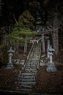 "Lanterns and a torii gate guard the stairs climbing up through sugi (Japanese cedar) and pine trees to a village Shinto shrine in Iitate-mura, Fukushima Prefecture, Japan.  So-called, ""avenues of sugi"" are emblematic of Japanese Shinto Shrines and Buddhist temples."