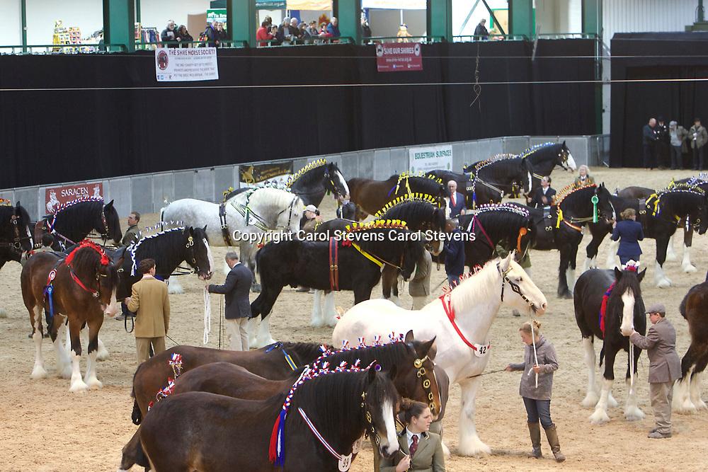 Shire Horse Society Spring Show 2017  Saturday Grand Parade