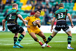 Marcus Watson of Wasps takes on James Fish and Rory Hutchinson of Northampton Saints - Mandatory by-line: Robbie Stephenson/JMP - 28/09/2019 - RUGBY - Franklin's Gardens - Northampton, England - Northampton Saints v Wasps - Premiership Rugby Cup
