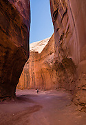 A hiker explores the elegant slot of Leprechaun Canyon in North Wash, between Hanksville & Hite, Utah, USA. Leprechaun Canyon's sandstone dates from the Triassic-Jurassic Period. Directions: from Hanksville, drive 26 miles south on Highway 95 to the junction with Utah 276 and stay left on H95 for another 2.0 miles across a wash, then park on the left (east) along a short road within the first 100 feet before its sandtrap end. Walk up the wash of Leprechaun Canyon 2 miles round trip to a gorgeous subway which narrows to a tight squeeze called Belfast Boulevard. Nearby, Glen Canyon National Recreation Area is just 8 miles south on H95.